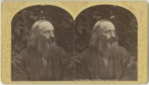 Image of William B. Nye - Stereoview