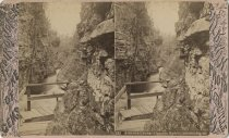Image of Up the Ausable River - Stereoview