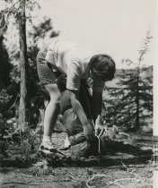 Image of Tying up the Sleeping Bag at Camp  - Print, Photographic
