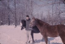 Image of Man and Horses - Transparency, Slide