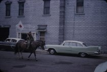 Image of Horseback Riding in a Parade - Transparency, Slide