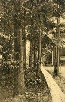 Image of The Mohawk, 4th Lake - Postcard