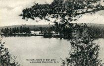 Image of Hiawatha Island in Star Lake Adirondack Mountains, N.Y.  - Postcard