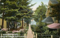 Image of Adirondack Mts. N.Y., Among the Cottages, Taylor's on Schroon. - Postcard