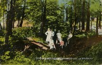 Image of In the Woods of the Adirondack Mts., Sacandaga, N.Y. - Postcard