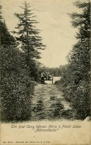"Image of The Boat Carry between Mirror & Placid Lakes ""Adirondacks"" - Postcard"