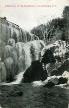 Image of Rice's Falls in the Adirondacks, Elizabethtown, N.Y. - Postcard
