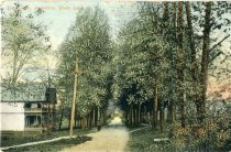 Image of Perry Ave., Assembly, Silver Lake, N.Y. - Postcard