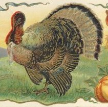 Image of Thanksgiving greetings, postcard front