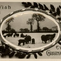 Image of To wish you every Christmas cheer, postcard front