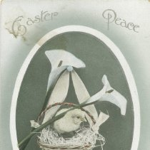 Image of Easter postcard to Charles Vollick, Mildmay, from J. Macdonald 1912