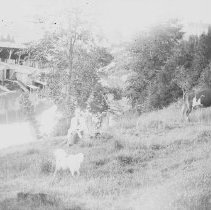 Image of A992.022.1889 - Negative, Glass Plate