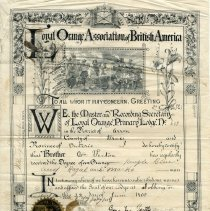 Image of A2008.016.008 - Certificate of declaration of William Fenton as a member of the Dobbinton Loyal Orange Lodge #609