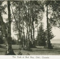 Image of The Park at Red Bay, Ont., Canada, postcard front