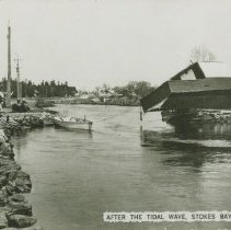 Image of After the tidal wave, Stokes Bay, Ontario, postcard front