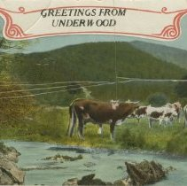 Image of Greetings from Underwood, postcard front