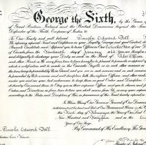 Image of Certificate of appointment : Lincoln Edward Doll