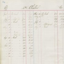 Image of H. Charlton Ledger, page 14 (sample page of 48 pages)