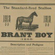 Image of Brant Boy Stallion poster, top half