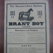 Image of Brant Boy poster, 1913