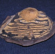 Image of 2015-301-0045-FIC - Sherd