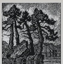 Image of 1986.12.1 - Woodcut
