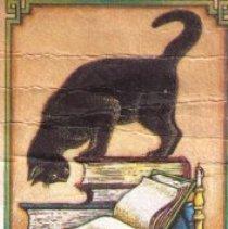 Image of College Book Store bookmark