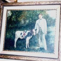 Image of Photo - Photo of oil painting of Fred Mueller with prize calf