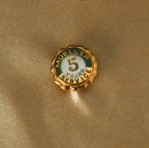 Image of Pin - 5 year anniversary/service award pin
