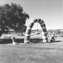 Image of snake swing at Kit Carson Park