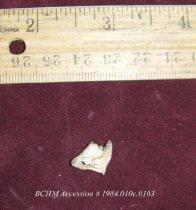 Image of Bone, unworked - 1984.010c.0103