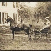 Image of 1993.00302.001.B - Osborne, Dr. & son-In Carriage