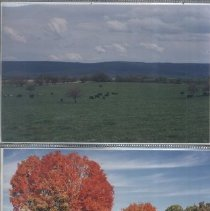 Image of Fall in Clarke County-Fields & Autumn Color