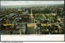 Image of Birds'-eye view of Meridian Street looking north, Indianapolis, Indiana, ca. 1905