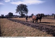 Image of Horse-drawn plow demonstration, Wabash County, Indiana, 1955 - This event was part of the National Conservation Day Plowing Contest.