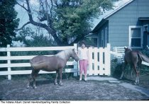 Image of Girl with two ponies, Wabash, Indiana, ca. 1960 -