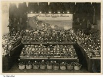 """Image of Display by the Terre Haute Vegetable Growers Association, Indiana, ca. 1910 - Stamped """"J. C. Allen, West Lafayette, Ind."""""""