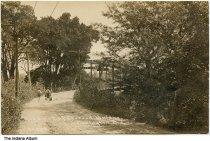 Image of Boys and dogs on a road near a bridge, Covington, Indiana, ca. 1910