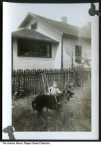 """Image of A boy in a stroller and a dog, Richmond, Indiana, ca. 1940 - On the back is handwritten """"Marnin (?) 1 yr. old, Billy's dog Tooties, 1440 Ratliff."""""""