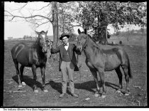 Image of Man holding the reins of two horses, probably Miami County, Indiana, ca. 1905