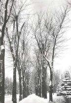Image of Winter Scene near Oshkosh - P1930.1.42