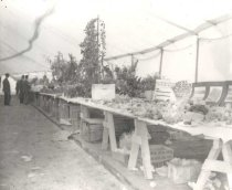 Image of Produce at the Winnebago County Fair - P1936.3.182