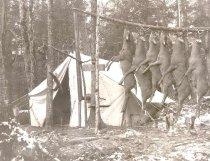 Image of Six Dead Deer