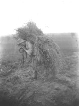Image of Nick Bruehl walking bundle of hay - P2002.14.450
