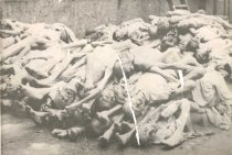 Image of Holocaust Victims at Buchenwald Concentration Camp - P2005.82.8