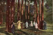 Image of Family standing beneath trees