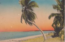 Image of On the Florida Coast