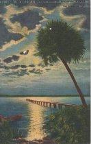 Image of St. Petersburg, Florida