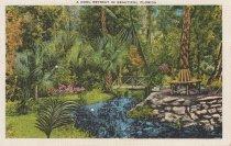 Image of Cool Retreat in Beautiful Florida