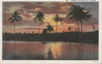 Image of Sunset in Tropical Florida